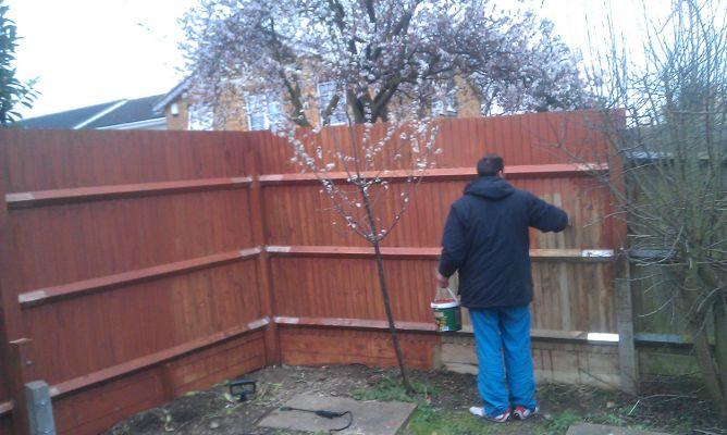 call-handyman-gardening-london-4